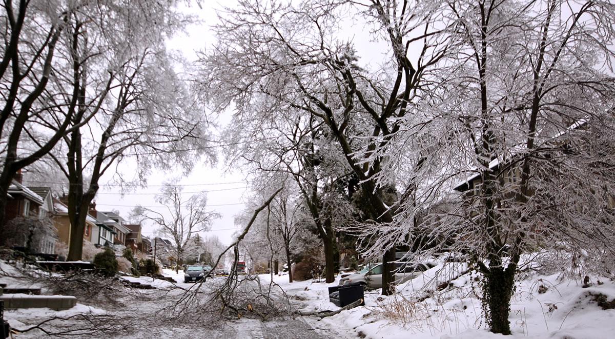 ice-storm (1)